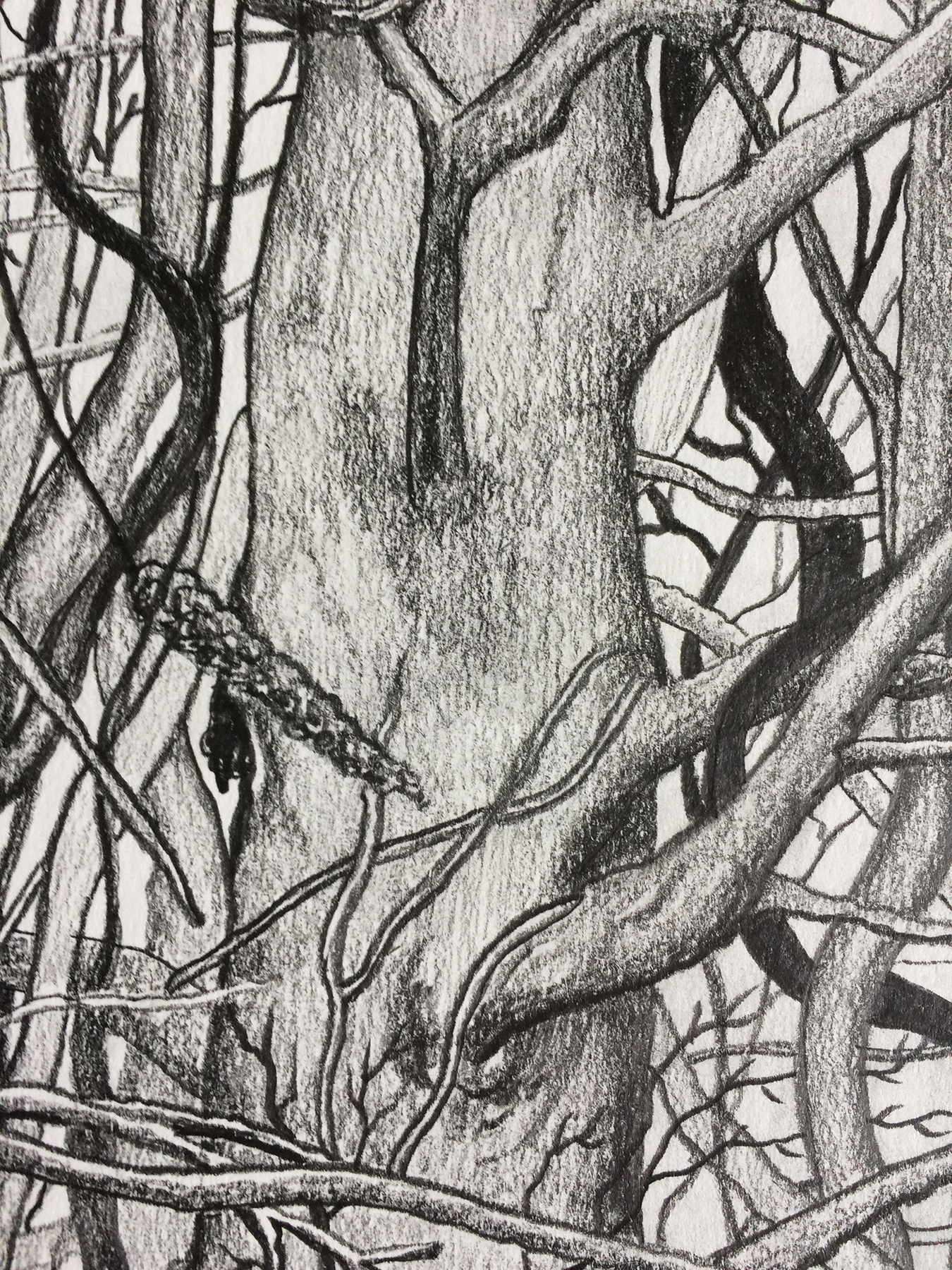 Human Nature 1   A2 Giclée Print - detail