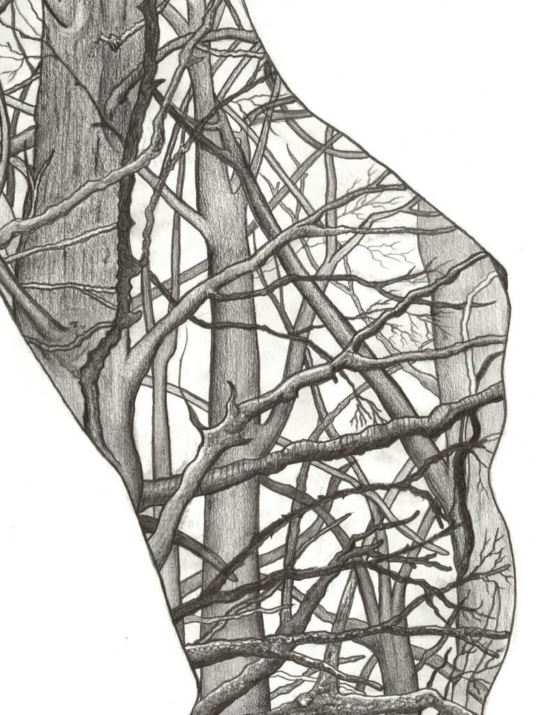 Human Nature 2 | A2 Giclée Print - detail