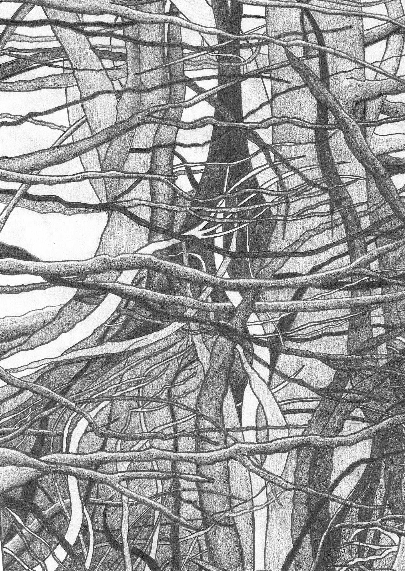 Human Nature 6 | Detail